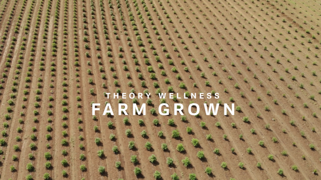 Farm Grown at Theory Wellness