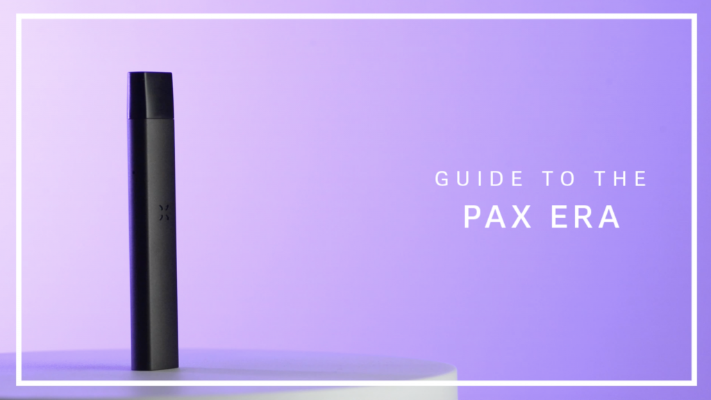 Theory Wellness Guide to the Pax Era